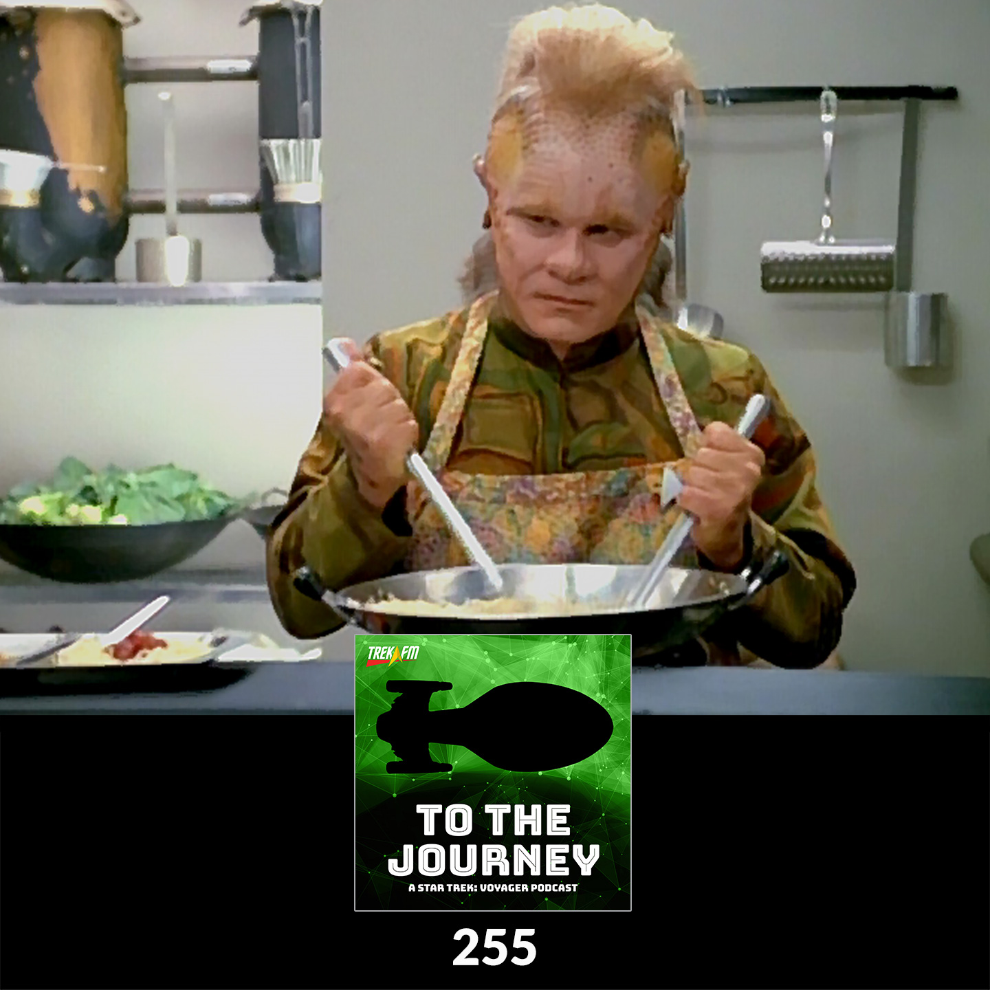 To The Journey 255: You're Such a Negative Neelix - Things We Love and Hate about Neelix