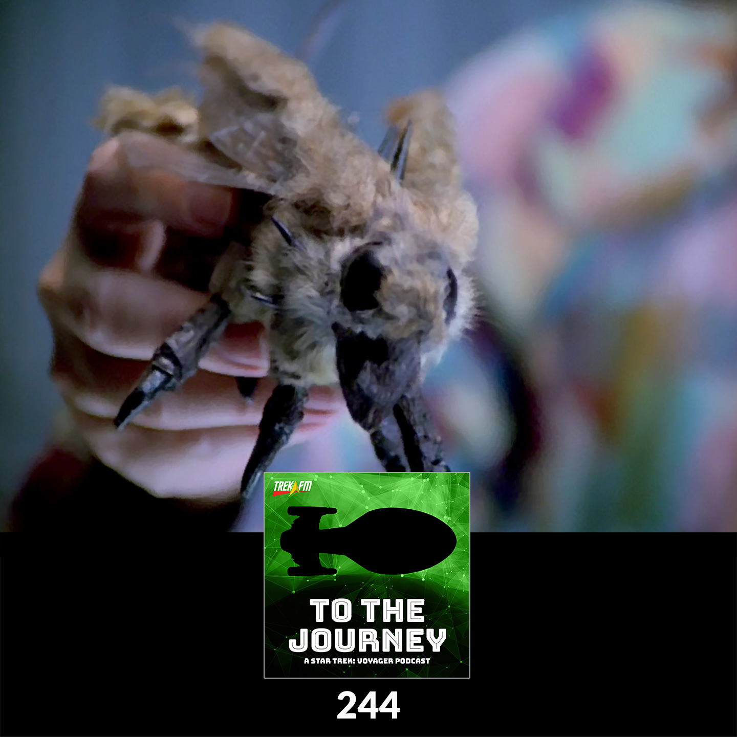 To The Journey 244: Fur Fly Vision Quest - Tuvix Alternatives.