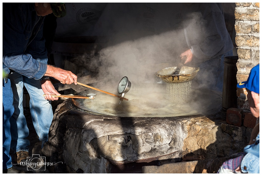 Temperature - A Florida Cane Grinding - Ashley Corinne Photography