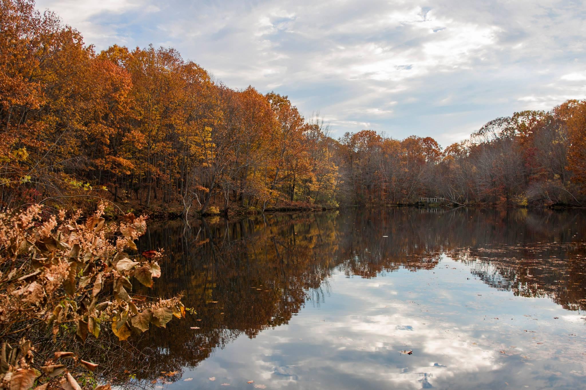 Hinckley Park in Autumn