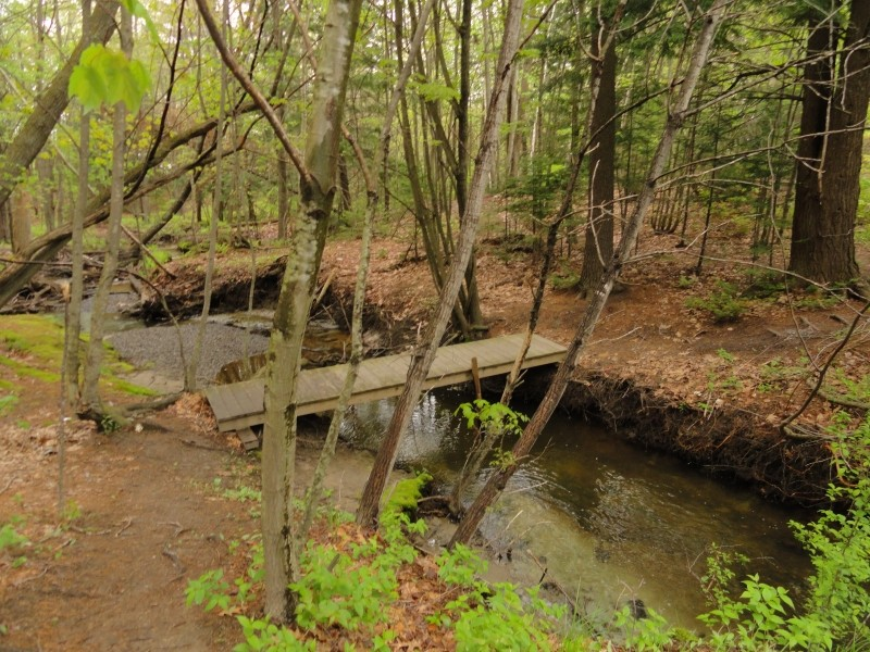 Bridge over the brook (Photo by Center for Community GIS)