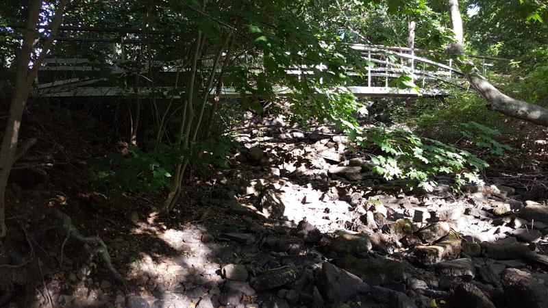 Bridge in Trout Brook Nature Preserve