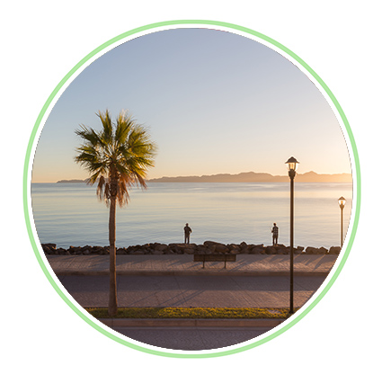 Updates and Gallery - Find out the latest news from The Outpost Montessori, here in Loreto, BCS.