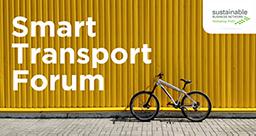 Header-Banner-Smart-Transport-256.png