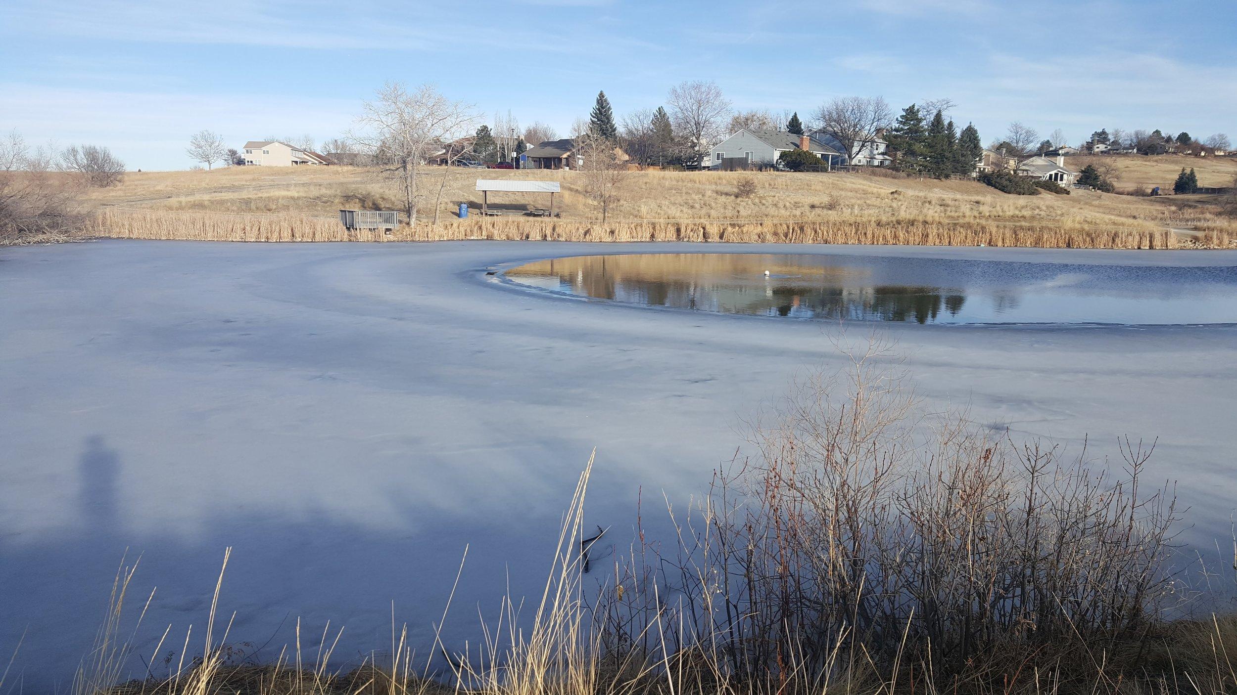Josh's pond.jpg