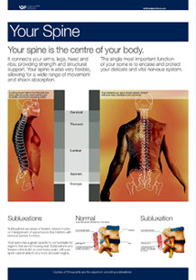 Your Spine Wall Chart.jpg
