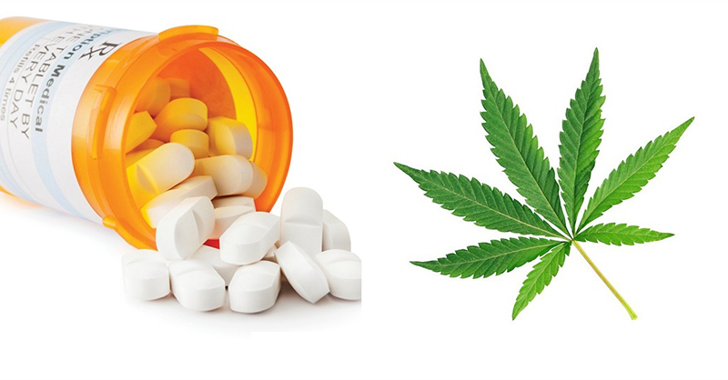 Association between medical cannabis laws and opioid overdose mortality has reversed over time - chelsea Shovera, Corey Davis, Sanford Gordon, & Keith Humphreys