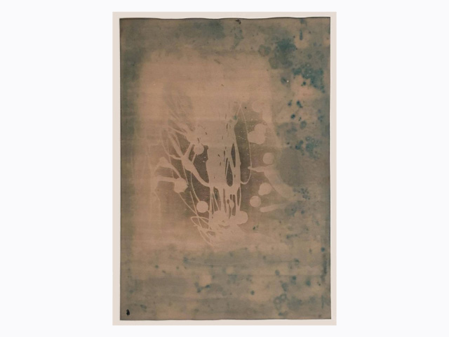 "Thomas Arden    Untitled , 2015  Cyanotype on paper  Width 14"" x Height 18"""