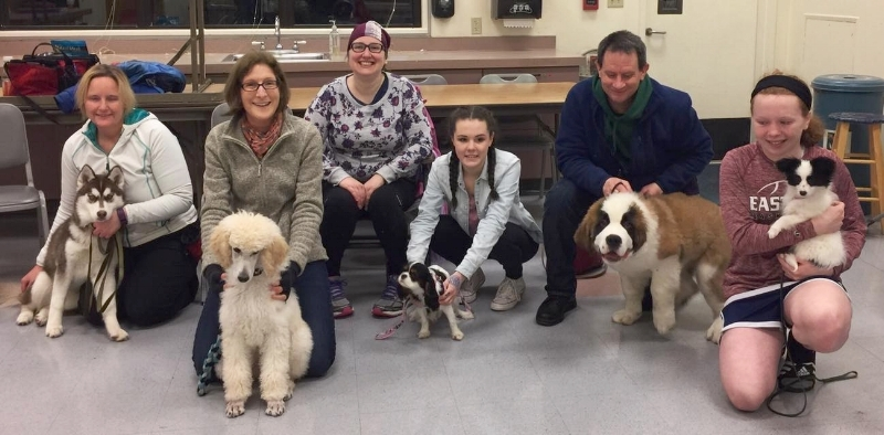 Puppy socialization class for puppy owners in Redmond, Bellevue, Sammamish, Kirkland, Medina and Issaquah, WA. Puppy socials can help your puppy play with other puppies and tire out your puppy.