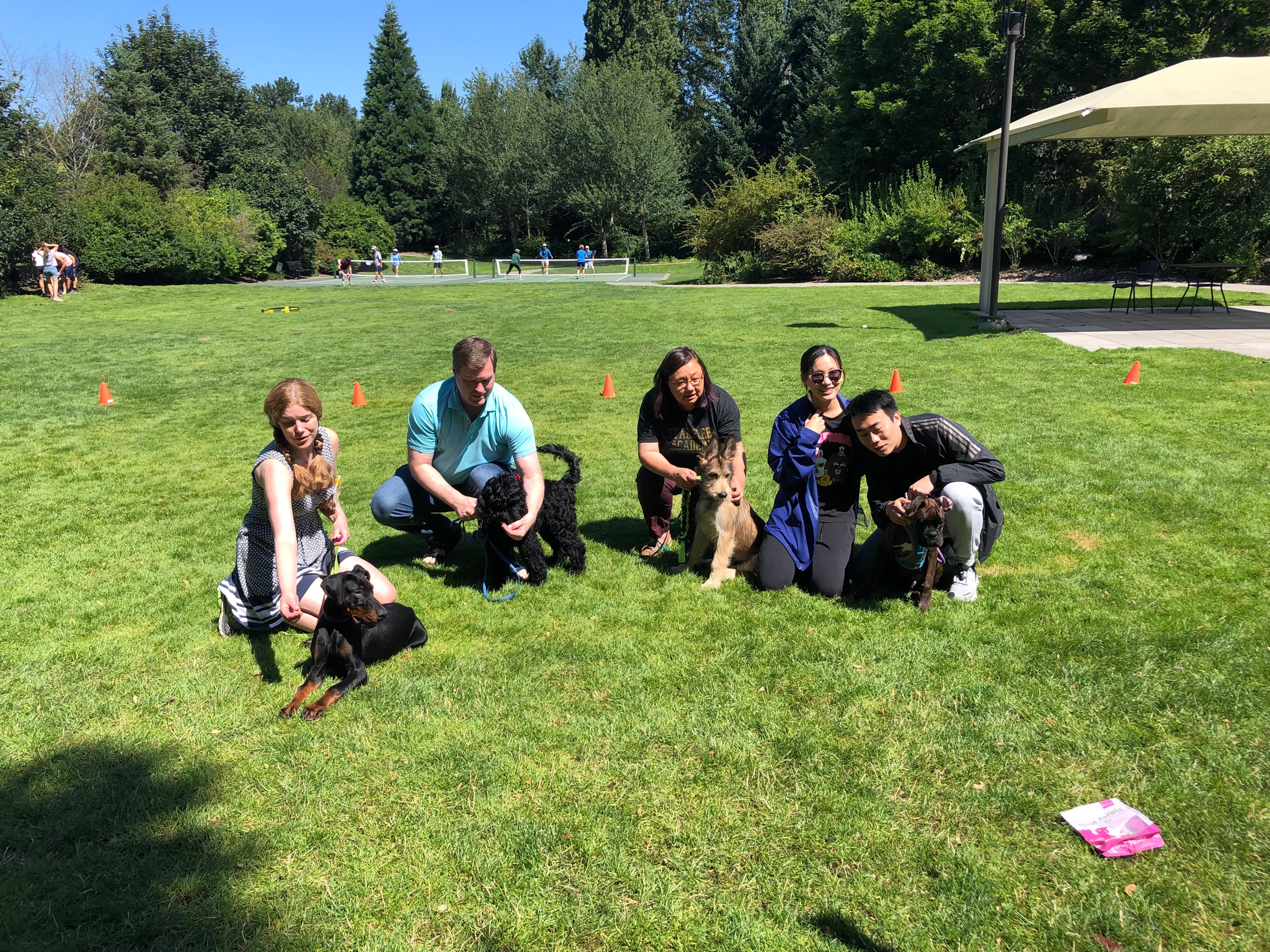 Best dog training classes and puppy socials in Redmond, Bellevue, Kirkland, Sammamish, Medina and surrounding areas in WA.