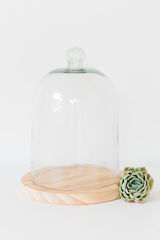 Glass Cloche