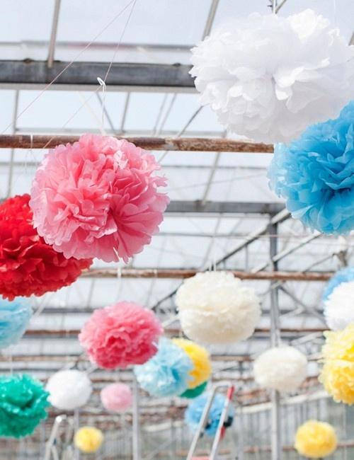 Coloured Tissue Pom Poms