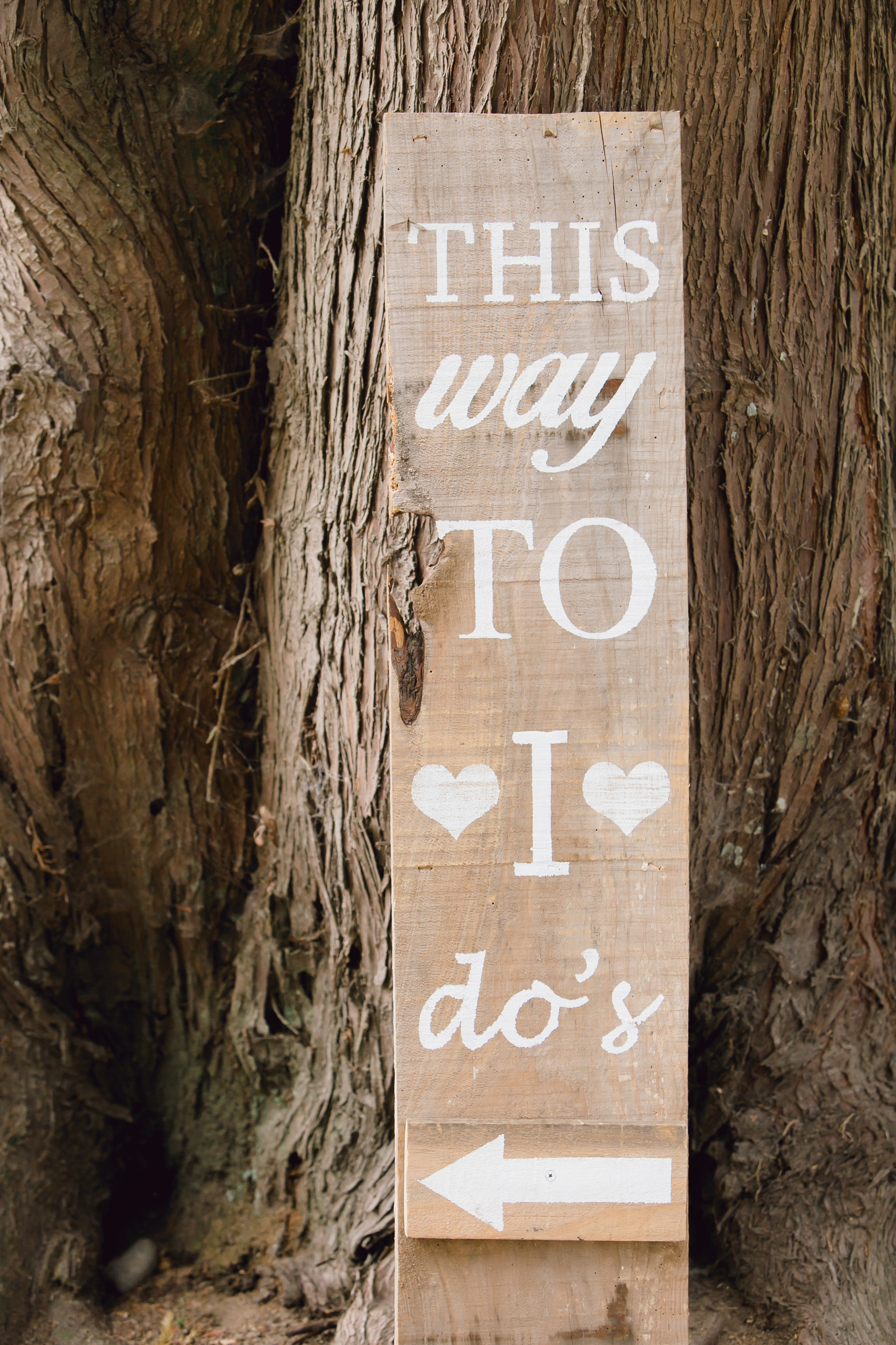 This Way To I Do's . .