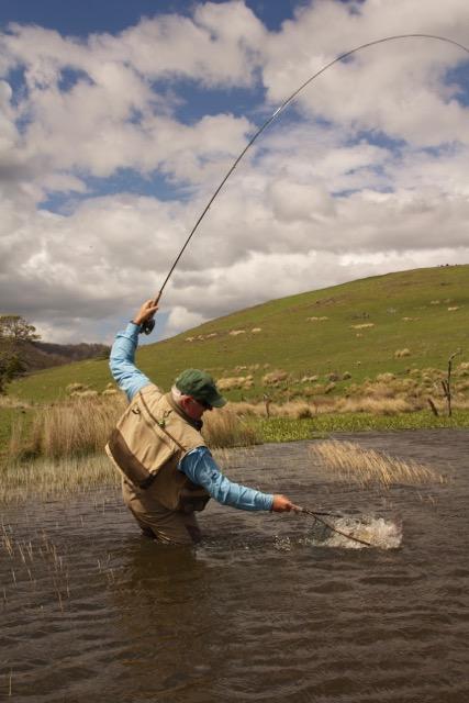 28 gates fly fishing tasmania