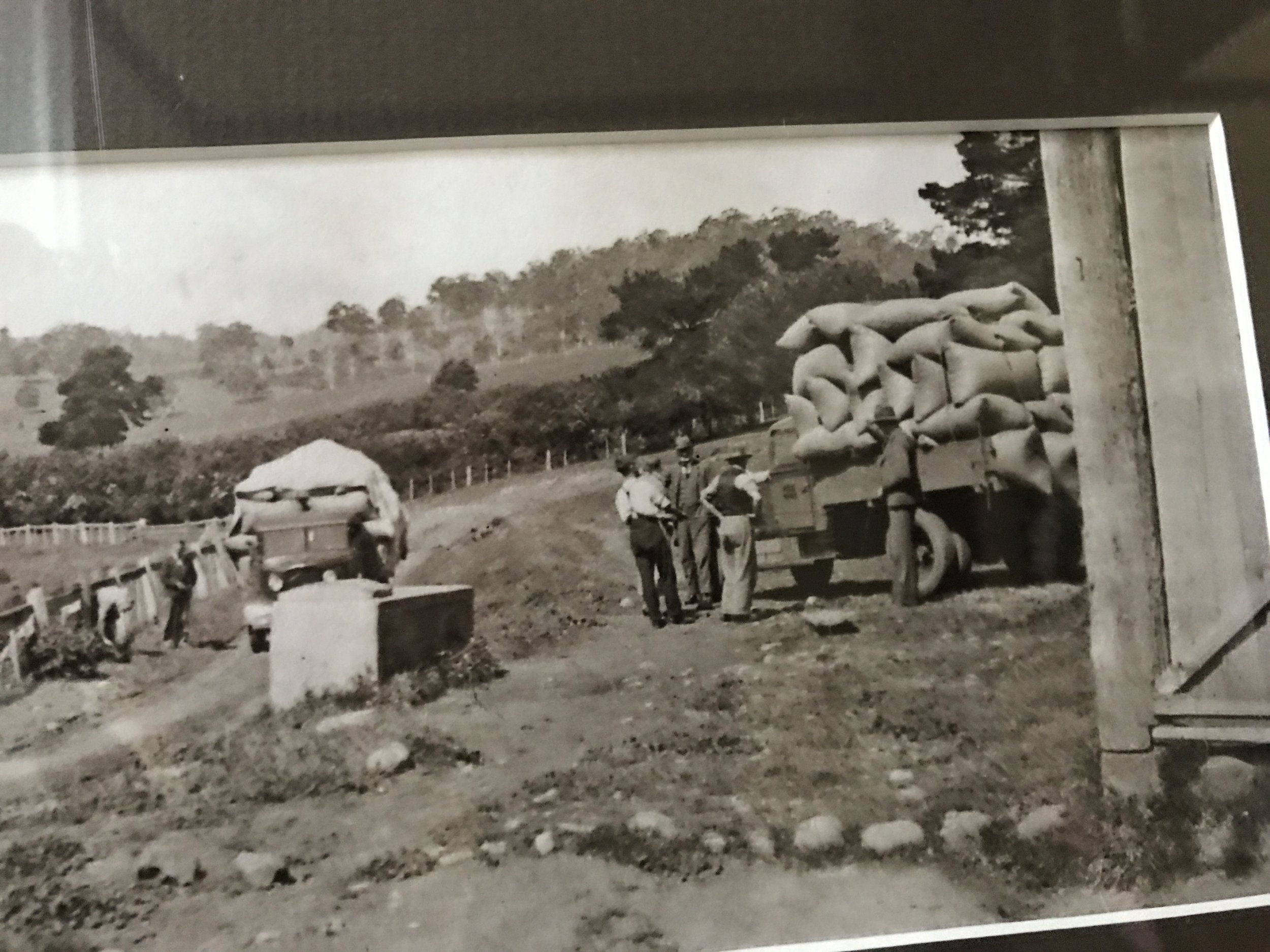 1940's - This is an original photo of 28 gates, men loading the wheat and chaff. If only I could find a photo of the horses in the stables..... A big transformation to what it is today!