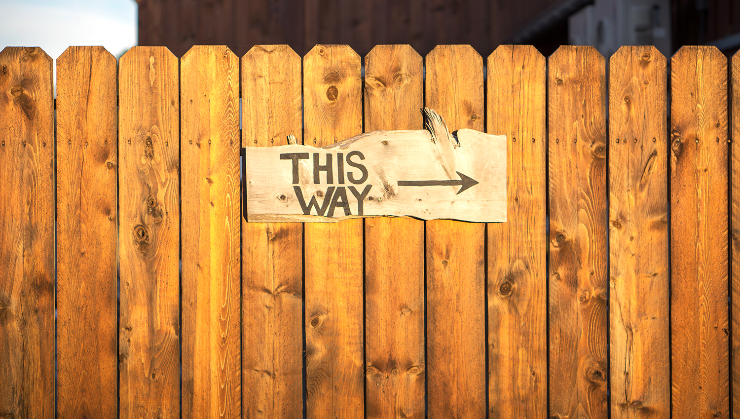 this way sign on fence.jpg