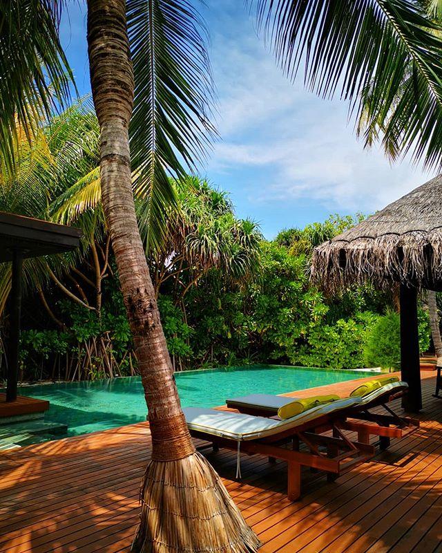 New palette! 😍😍🌴🌴 #tulamala #consciouscreations #coconut #cocoloco #love #naturalbeauty #knottedwithlove #malamaking #maldives #beautifulmaldives #anantarakihavah