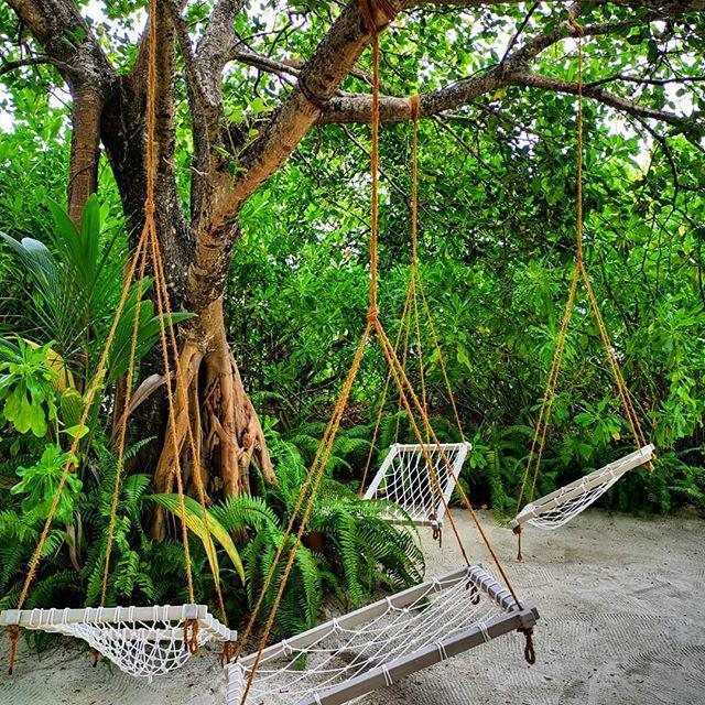 H A M M O C K  O' C L O C K  #tulamala #relax #swing #tree #banyan #naturalbeauty #maldives #maldivesislands #beautifulmaldives #milaidhoo #slh #islandlife