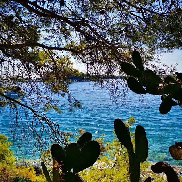 Super grateful to be soaking up glorious Adriatic waters. Not missing my 🌴🌴 just yet! 💦 🍃💙 #tulamala #travel #islandlife #hvar #croatia #sunseandsong #adriaticsea #sealovers #water #lovinglife