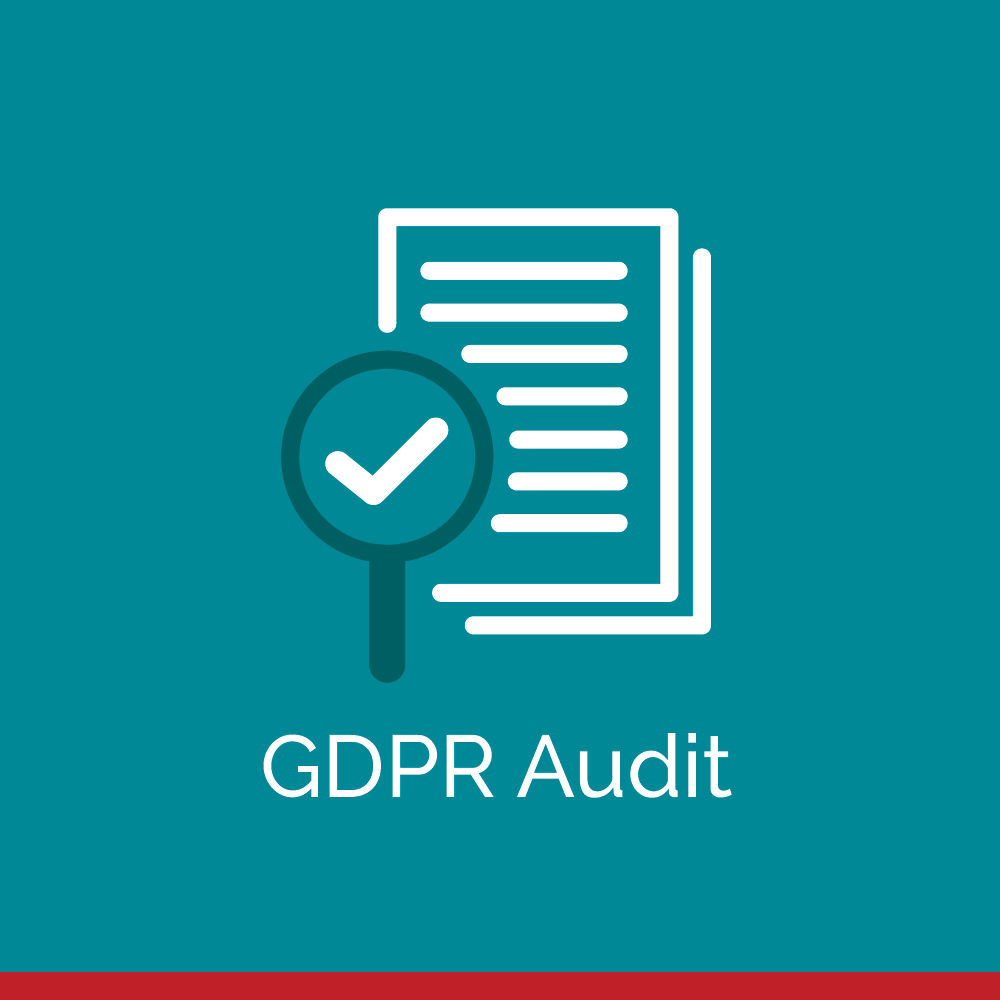 Briefed-Data-Audit-icon-web-R-18.png