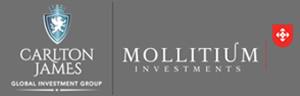 Mollitium