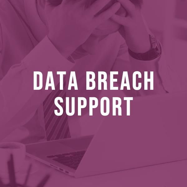 Data breach support for business