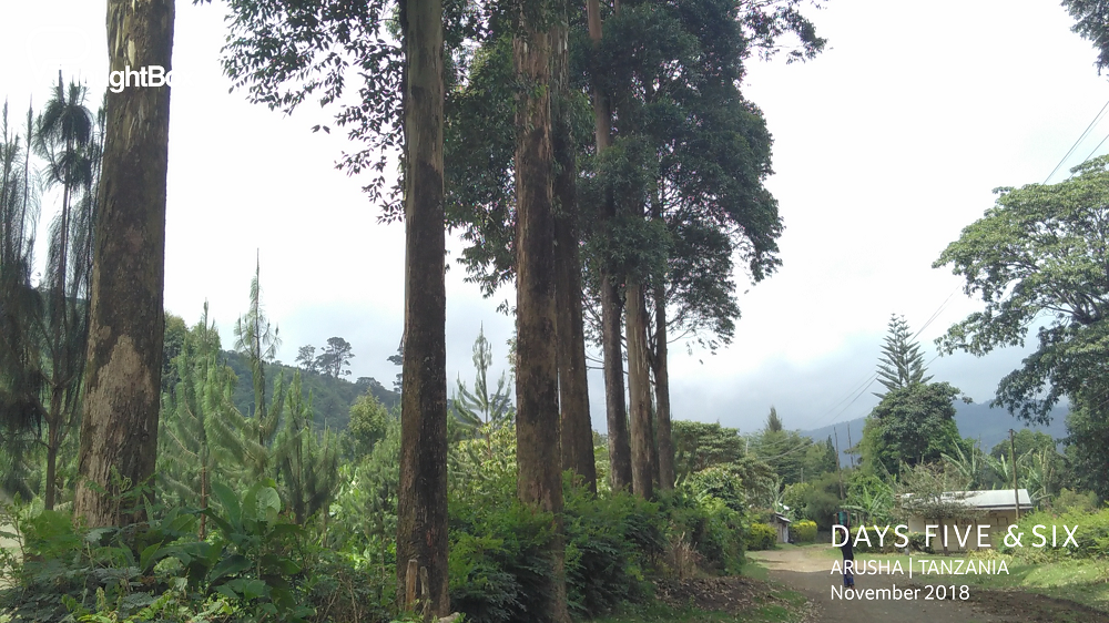 Hiking up into the foothills of Mount Meru.