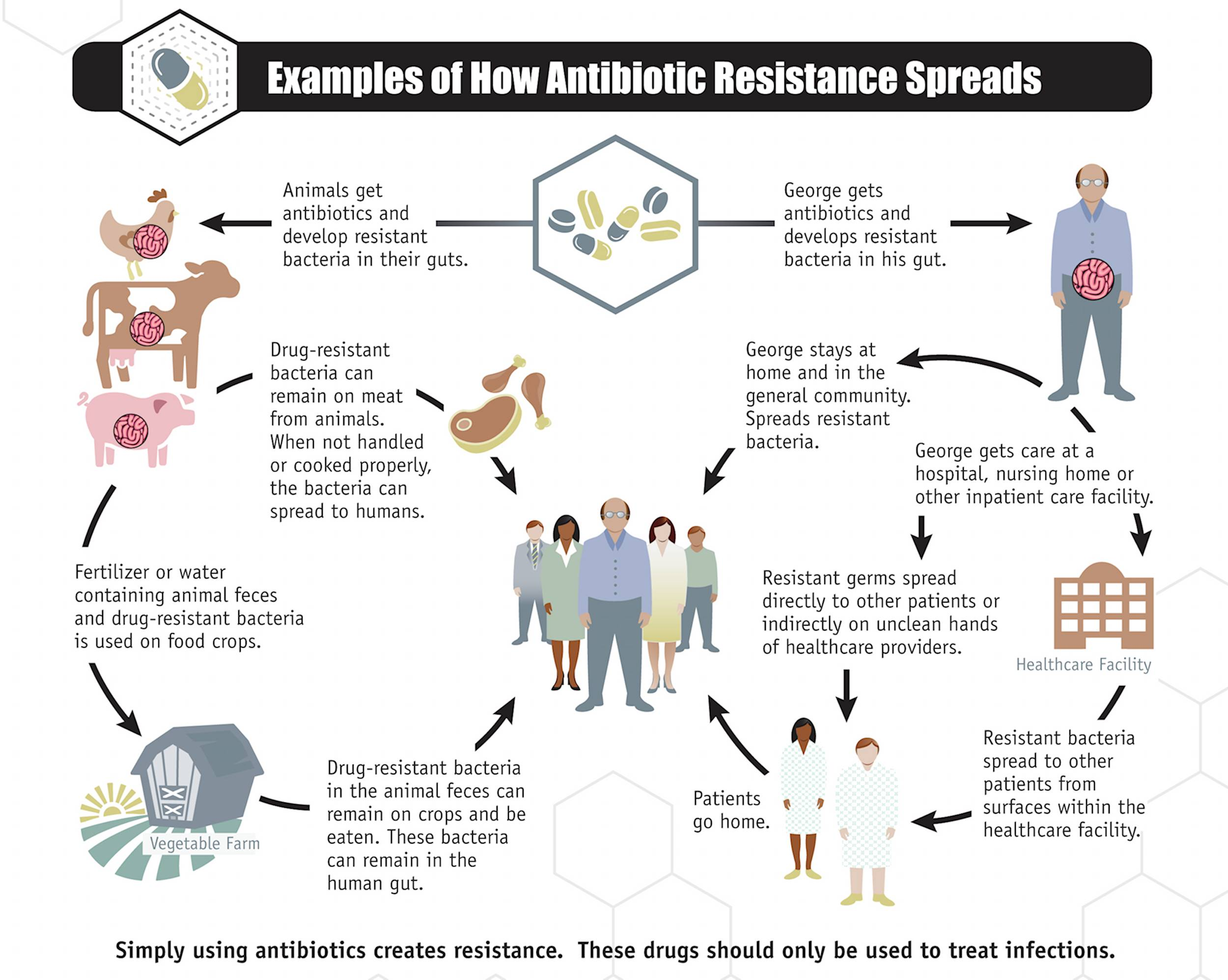image courtesy of    CDC: Centers for Disease Control and Prevention