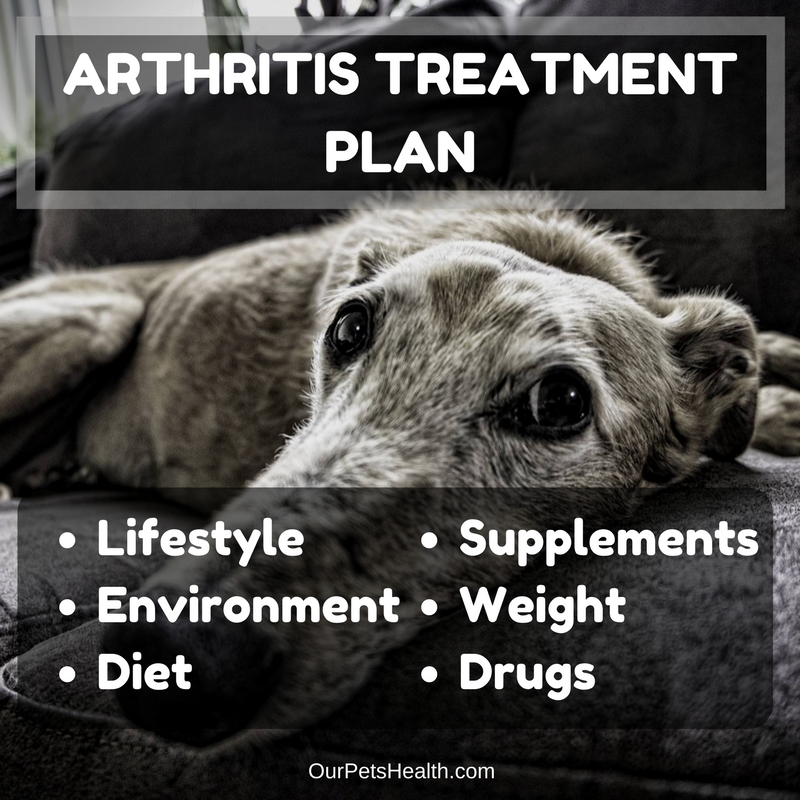 arthritis treatment plan includes lifestyle, environment, diet, supplements, weight and drugs
