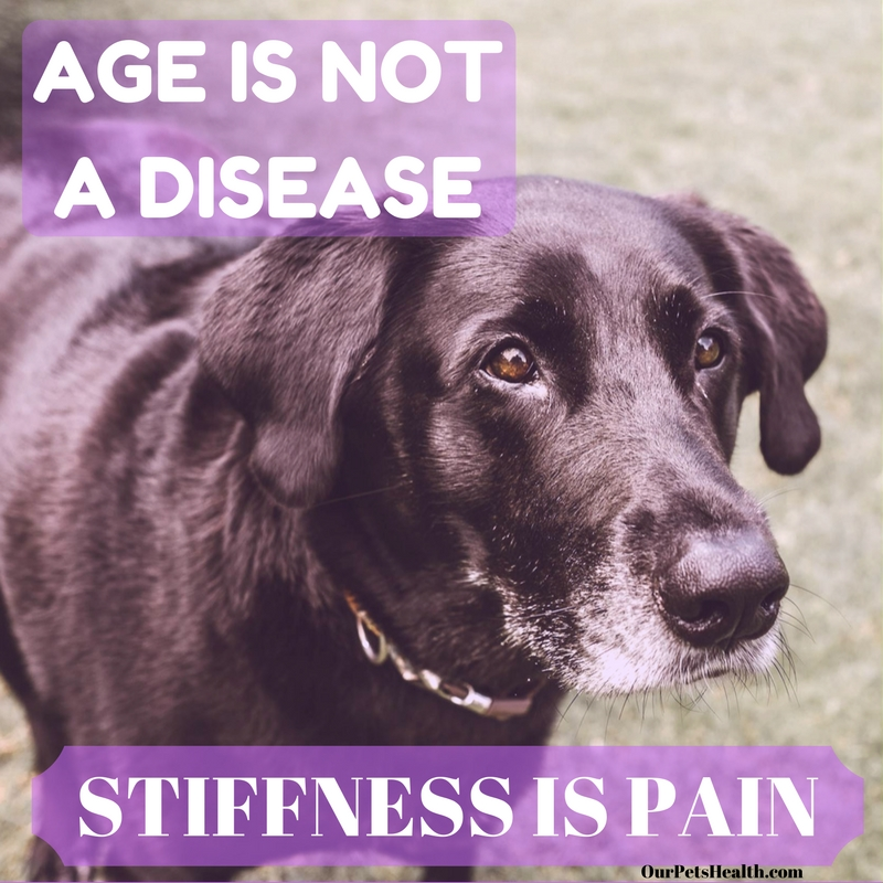 AGE IS NOT A DISEASE STIFFNESS IS PAIN.jpg
