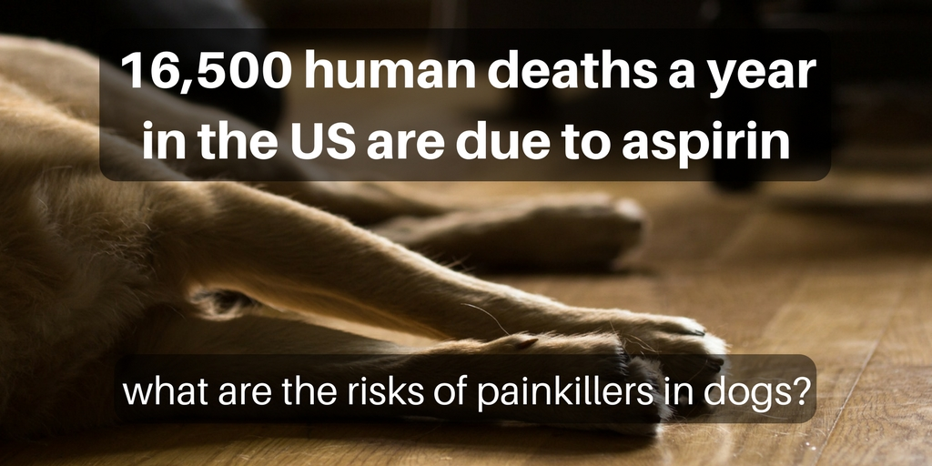 16,500 deaths a year in the US due to aspirin.  What are the risks of pain killers in dogs