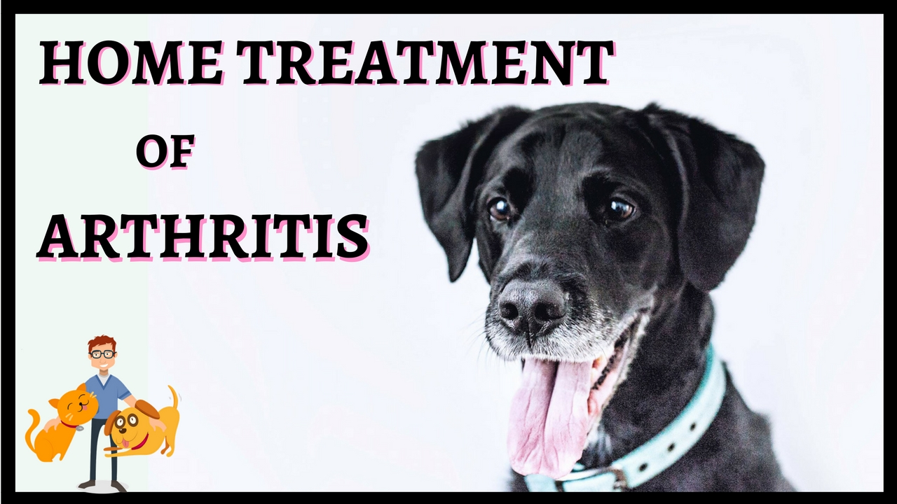 home treatment of arthritis