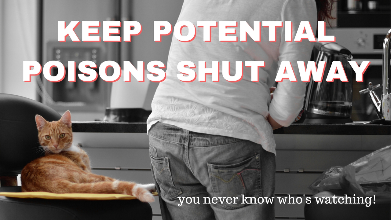 KEEP POTENTIAL POISONS SHUT AWAY and out of reach, you never know who's watching!
