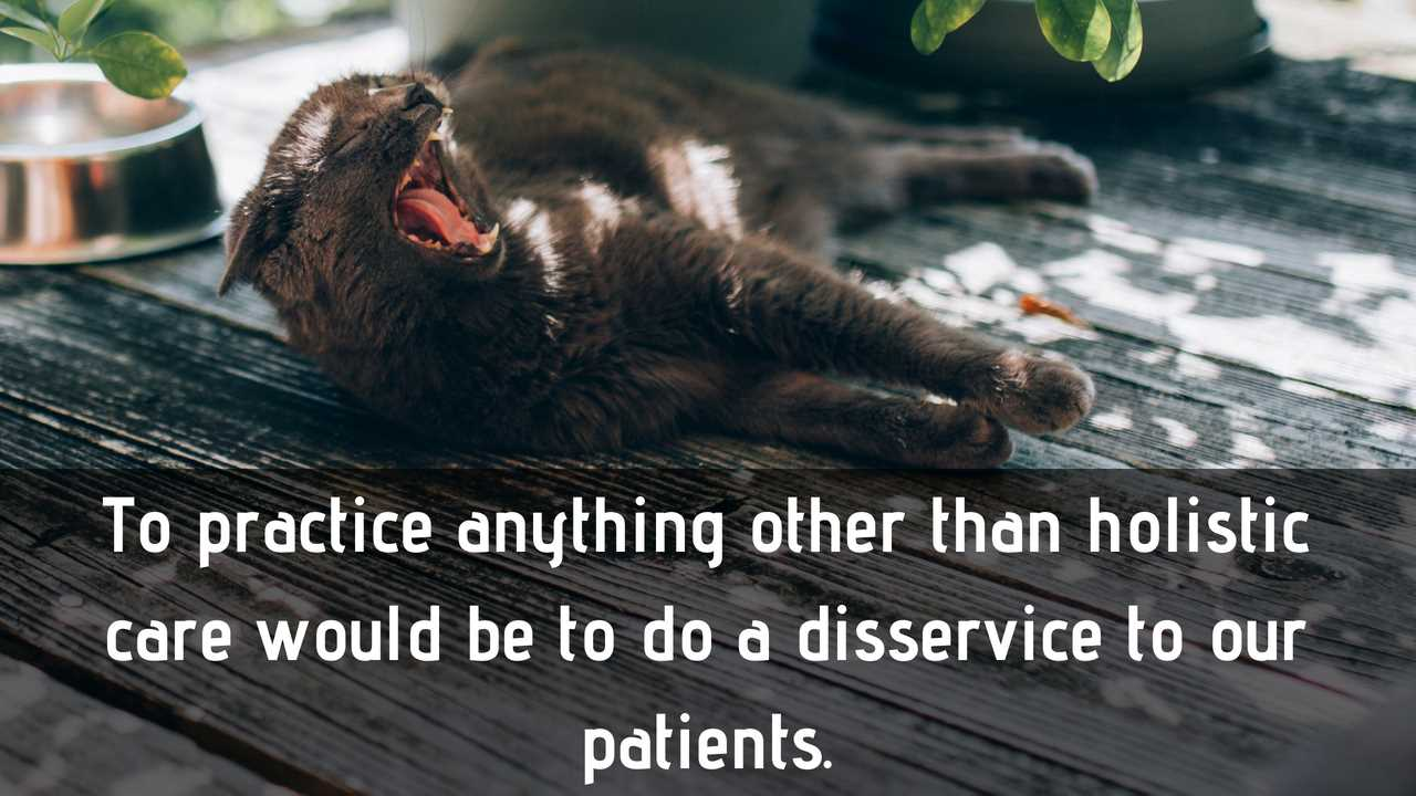 to practice anything other than holistic vet care would be to do our patients a disservice