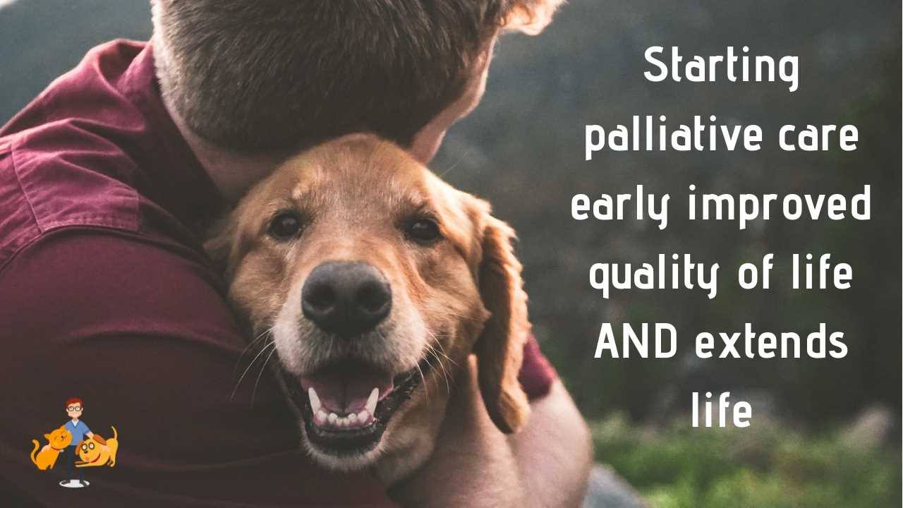 Starting palliative care early improves dog and cat quality of life AND extends their life
