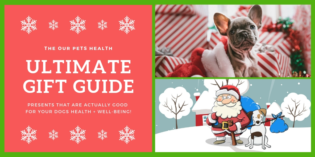 check out the our pets health ultimate guide to the best Christmas gifts for dogs