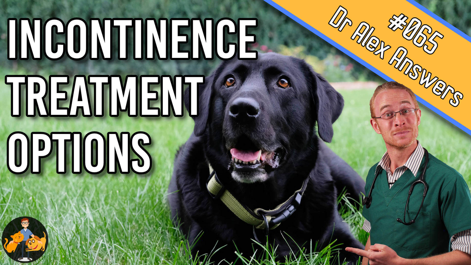 incontinence treatment options 065 compressed.jpg