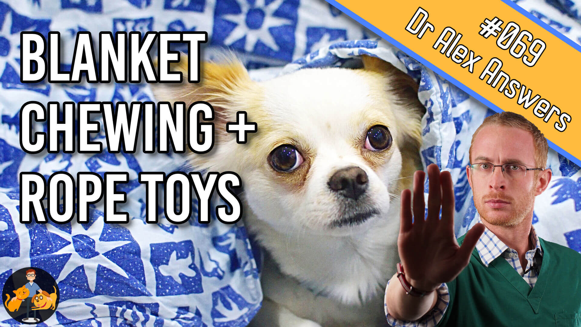 blanket chewing and rope toys in dogs - the risk of a linear foreign body