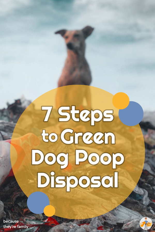 7 steps to green dog poop disposal