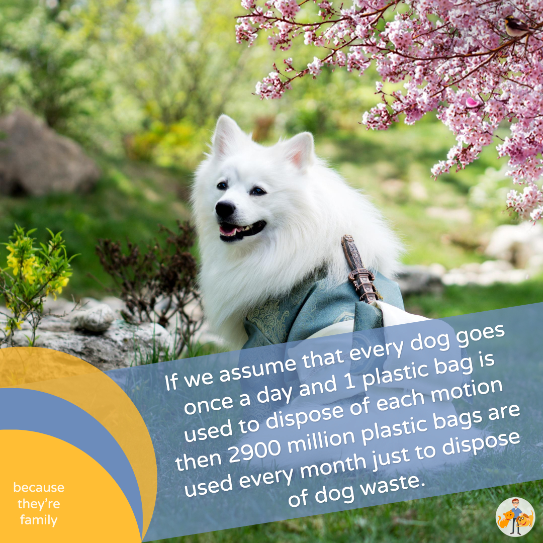 Disposing of dog poop in the trash uses over 2900 million plastic bags a month in the US, UK and Canada alone. Definitely not green!