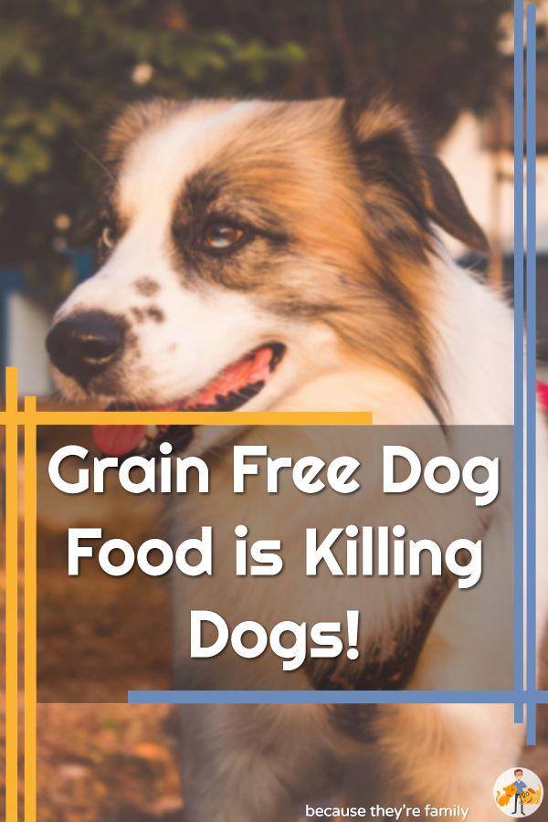 grain free dog food is killing dogs!