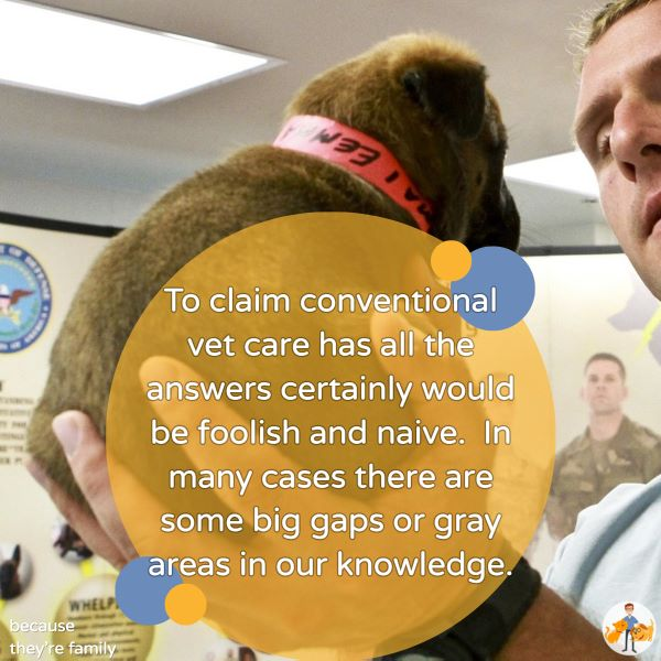 to claim conventional vet care has all the answers would be foolish and naive