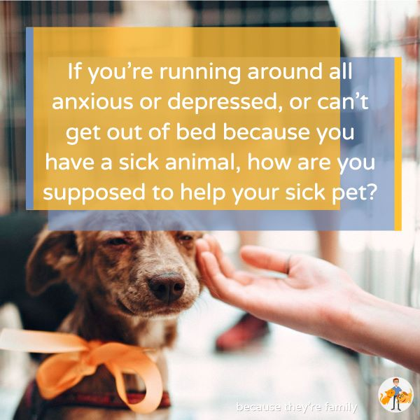 If you're running around all anxious or depressed, or can't get out of bed because you have a sick animals, how are you supposed to help your sick pet?