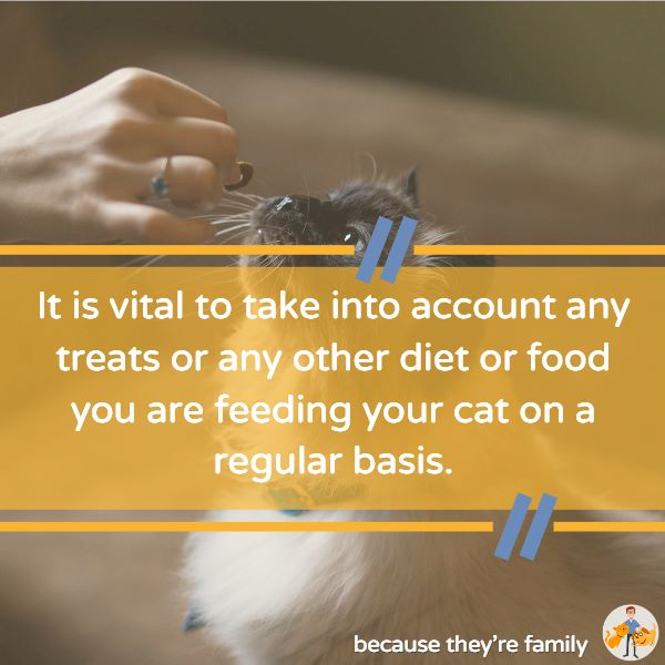 you need to take into account all the treats and other food items you feed your cat