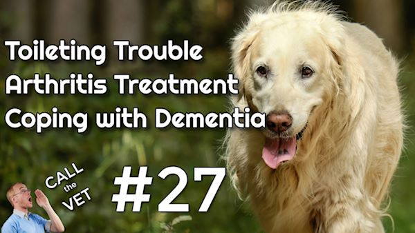 call the vet episode 27 - toileting, arthritis and dementia