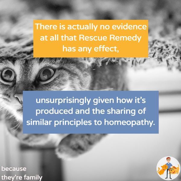there is no evidence that rescue remedy has any effect on cats