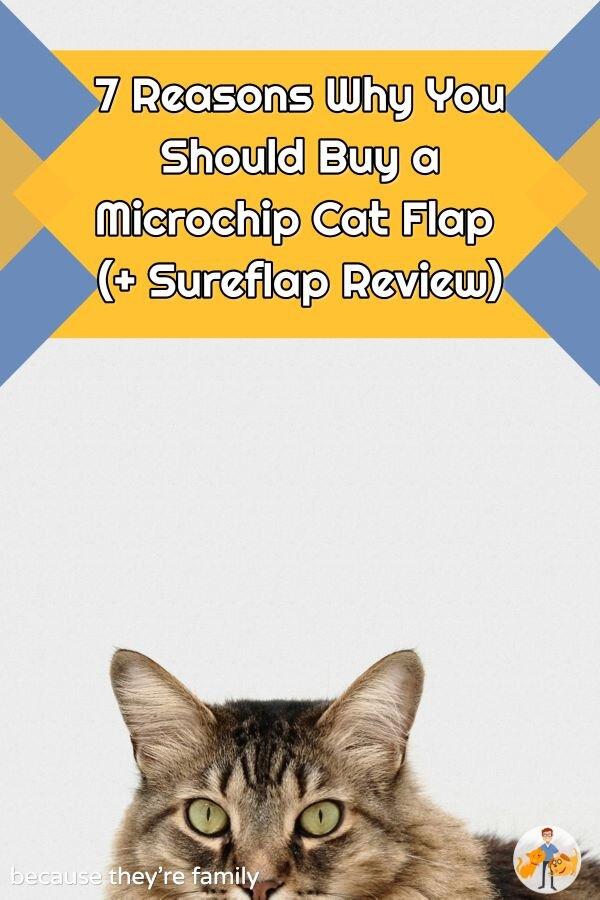 microchip cat door review