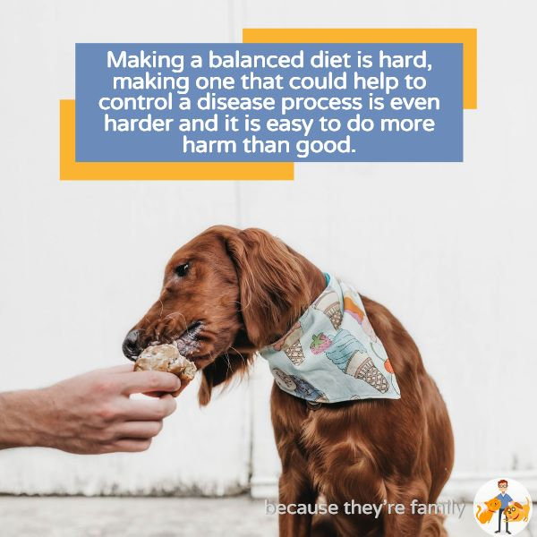 making a balanced home-cooked dog diet is really challenging, especially if your pet has specific nutritional requirements