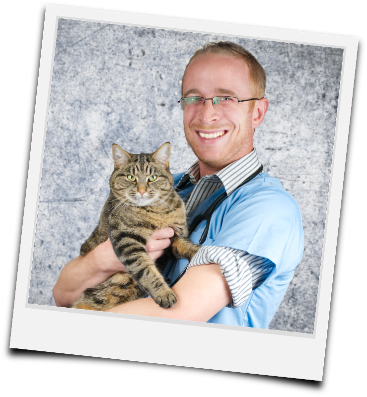 Dr Alex Avery portrait with Molly the cat