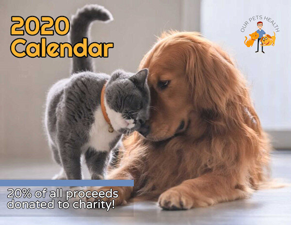 This calendar is the perfect Christmas gift for every dog and cat lover!